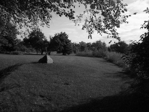 9am-sun-shade016500.jpg