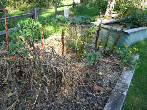 orchard-installation-day-3decay.jpg