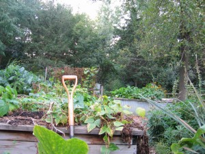 gardensenscence09