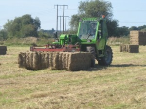 james-stacking-hay-lugg-meadow