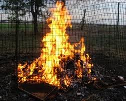 hive-burning