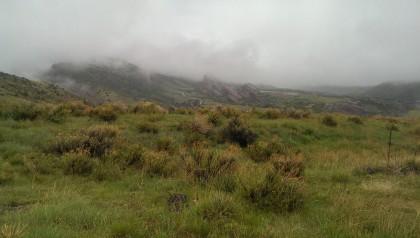 Mt. Falcon