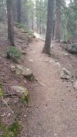 Upper Maxwell Falls Trail350