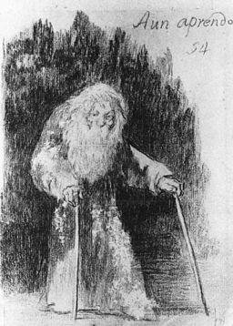 Goya_'I_am_Still_Learning'