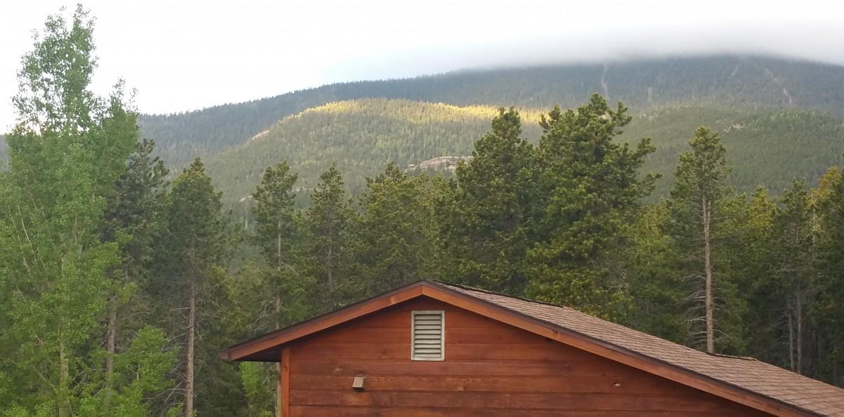 Black Mountain this morning