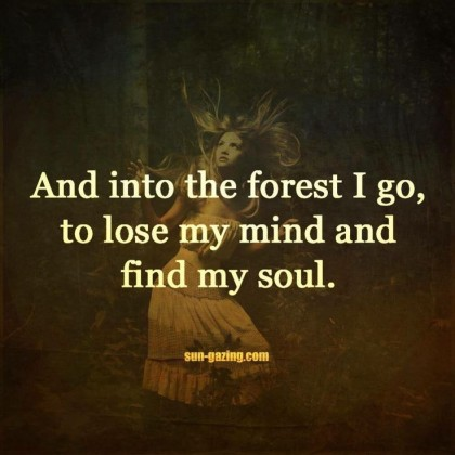 forest and soul