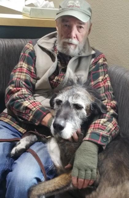 Two gray beards, puppies still inside