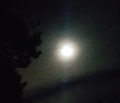 Full Tu BiShvat Moon, 2019
