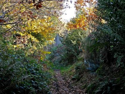 Dark Lane, Southowram, England